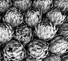 Artichokes Have Lovely Lines! by paintingsheep