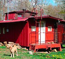 Caboose House by vigor