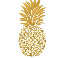 Pineapple by juliapram