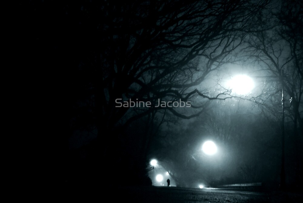 Walking at Night, New York City, USA by Sabine Jacobs