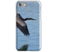 Frozen in Flight - Great Blue Heron iPhone Case/Skin