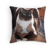 Simon in Sunlight Throw Pillow
