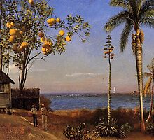 Bierstadt Albert a View in the Bahamas  by naturematters