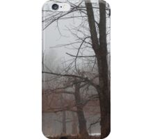 Old Orchard #1 iPhone Case/Skin