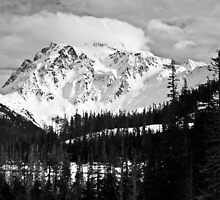 Shuksan in Black & White  by Appel