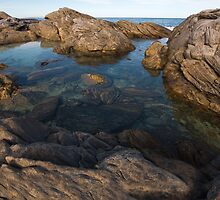 rockpool by louise