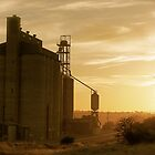 early morning at the store - grain store by todski2