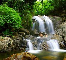 Lokkam Falls - Munnar, Kerala by Saikat Babin Biswas