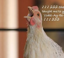 Farm talk - She taught me to yodel! by Maree  Clarkson