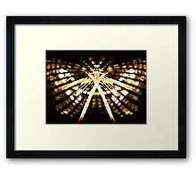 Passion Vine Butterfly Framed Print