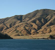 Folded hills - New Zealand by Ouzopuppy