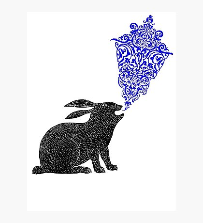 Rabbit Sings the Blues Photographic Print