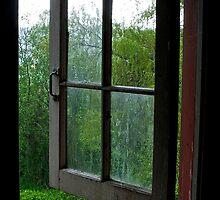 Fresh air #2 by Jeffrey  Sinnock