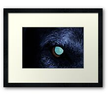 The Evil Eye! Framed Print