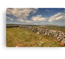Burren Walls Canvas Print