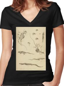 The Reptiles of British India by Albert C L G Gunther 1864 0505 Many Lizards Women's Fitted V-Neck T-Shirt
