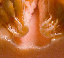 Cantaloupe Seeds II by ionclad