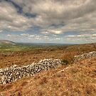 Burren Stone Walls by John Quinn