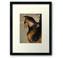 Goofy as a Dog Framed Print