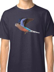 Birding and Wildlife: Bourkes Parrot Classic T-Shirt