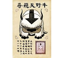 Avatar the Last Airbender - Lost Appa Wanted Poster Photographic Print