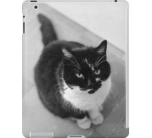 Will Pose for Milk iPad Case/Skin