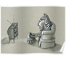 Retro Zebra Poster
