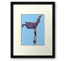 Bird Rescue Boat Framed Print