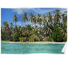 Tropical beach from water surface Poster