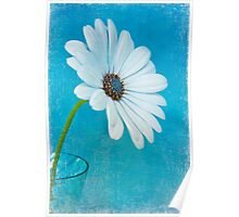 Peek-a-Blue 2 Poster