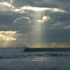 Solitary Surfer by Andrew Lever