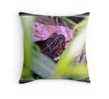 IN HIDING Throw Pillow