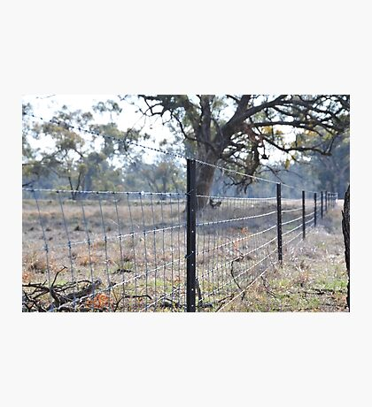 Wire Fence Photographic Print