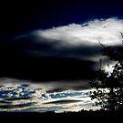 Black skies by Elissa  .