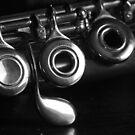Flute 9638 by João Castro