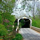 Baumgardner Mill Covered Bridge by Hope Ledebur