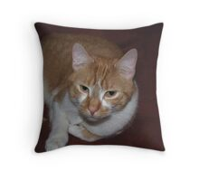Hangin' with Mr. Kisses Throw Pillow