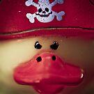 My Pirate Nightmare! by Susana Weber