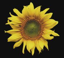 Sunny Sunflower by Jacqueline Eden