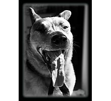 Tanning of the Tongue Photographic Print