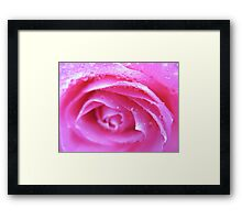 Neon Pink Rose Framed Print