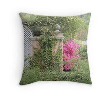 Pink Azalea Blooming by a Wall Throw Pillow