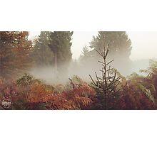 Nebeltag Photographic Print