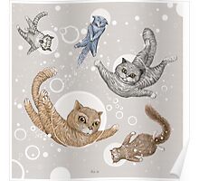 Space Cats Poster