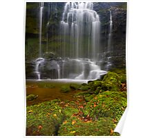 Mystical Falls, Scaleber Force Poster