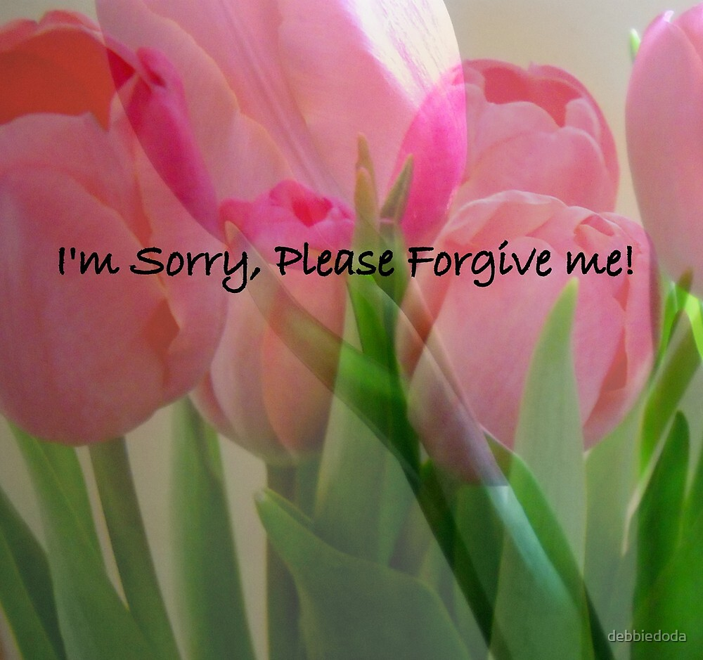 I'm Sorry, Please Forgive Me by debbiedoda