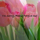 I'm Sorry, Please Forgive Me by debbiedoda