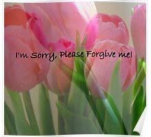 I'm Sorry, Please Forgive Me Poster