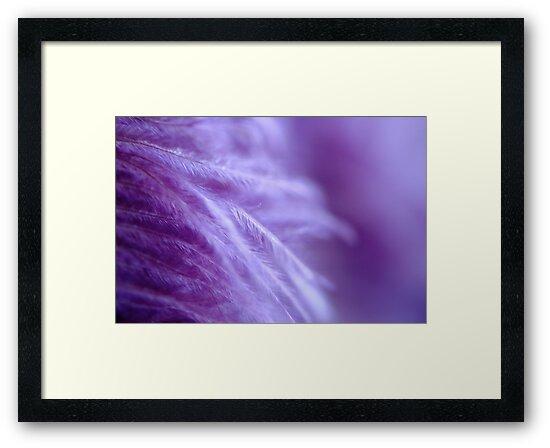 Tickled... Purple! by Ainsley Kellar Creations