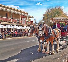 Main Street, Hahndorf by Barb Leopold